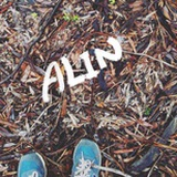 Alin John