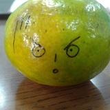 赤道上的绿橘子