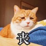 twxiao