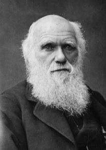 查尔斯·达尔文 Charles Darwin