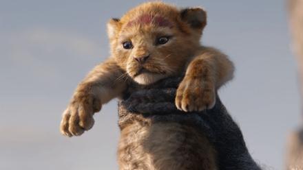 王者之狮归来!暌违25年的大型吸猫现场怎能错过?