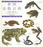 彩图动物百科