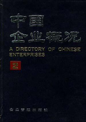 中国企业概况(2)