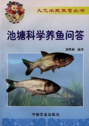 池塘科学养鱼问答