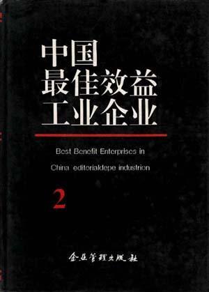 中国最佳效益工业企业(2)