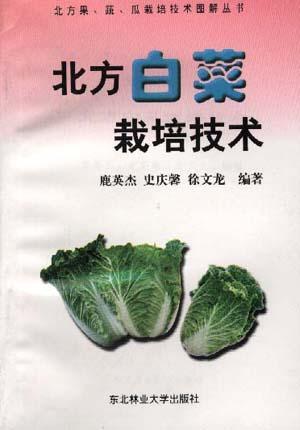 北方白菜栽培技术