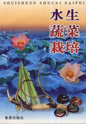 水生蔬菜栽培