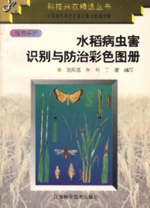 水稻病虫识别与防治彩色图册
