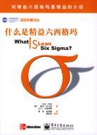 什么是精益六西格玛