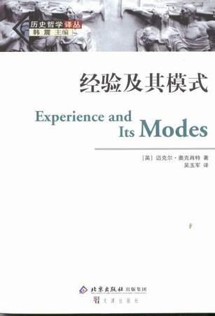 经验及其模式