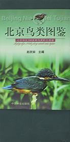 北京鸟类图鉴