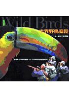 世界野鳥追蹤
