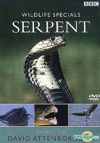 Wildlife Specials - Serpent