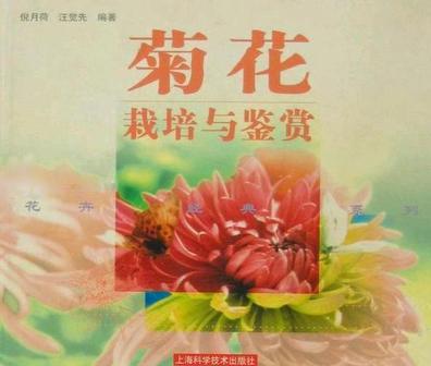菊花栽培与鉴赏