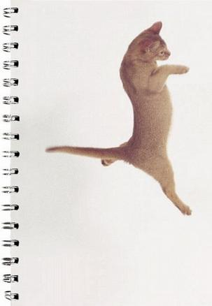 Dancing with Cats Solo Cat Journal