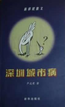 深圳城市病