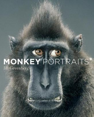 Monkey Portraits