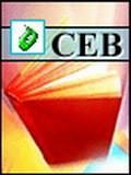企业财务战略与财务控制