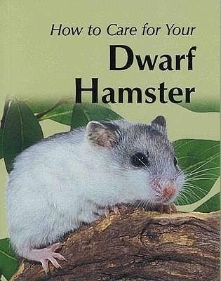 Your First Dwarf Hamster