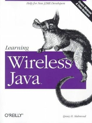 Learning Wireless Java