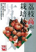 荔枝高产栽培技术