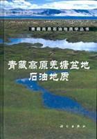 青藏高原羌塘盆地石油地质