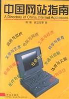 中国网站指南