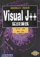 Visual J++实战演练