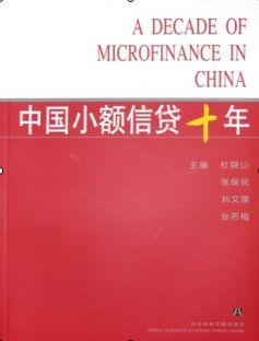 中国小额信贷十年