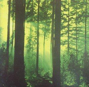 Forests of Witchery