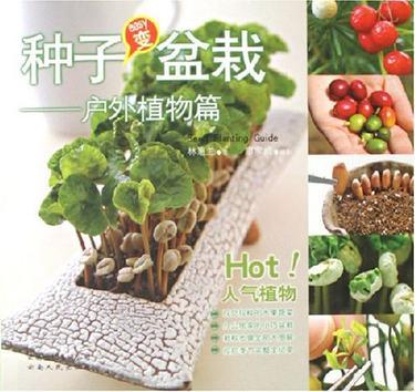 种子变盆栽-户外植物篇