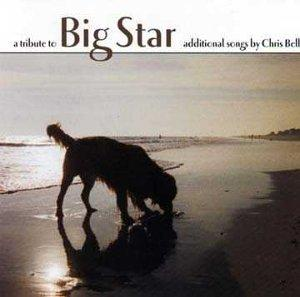 A Tribute to Big Star