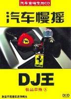 汽车慢摇DJ王 极品串烧5
