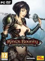 国王的恩赐:戎装公主 King's Bounty: Armored Princess