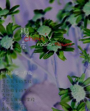 杨晨de那一片花