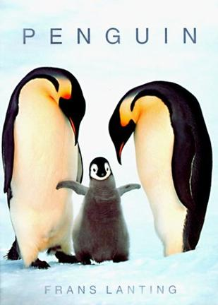 Penguin (Photobook)