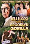 贝拉卢高希遇上布鲁克林的大猩猩