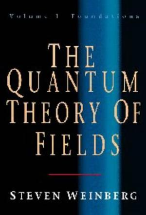 The Quantum Theory of Fields, Vol. 1