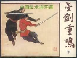 金剑重鸣(下)