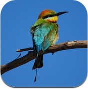 Kakadu birds (iPhone / iPad)