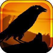 乌鸦 Crow