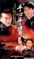 二十一集电视连续剧手心手背21片装(VCD)