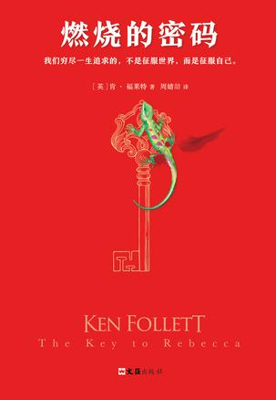 Book Cover: 燃烧的密码