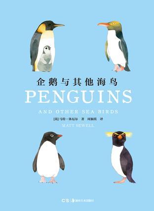 企鹅和其他海鸟