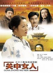 三十二集电视连续剧 关中女人 十一碟装(DVD)