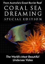 珊瑚海之梦