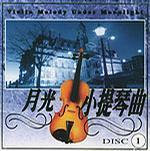 月光小提琴曲1(简装