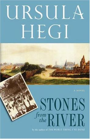 """stones from the river by ursula """"high in the hazy sky, the snowfkakes looked tiny and all alike, but as they drifted past the narrow window of the sewing room, all were unique - long or round or triangular - as if they'd borrowed their shapes from the clouds they'd come from."""