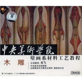 木雕 中央美术学院壁画系材…(VCD)