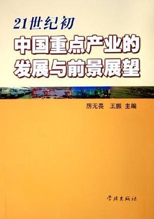 21世纪初中国重点产业的发展与前景展望